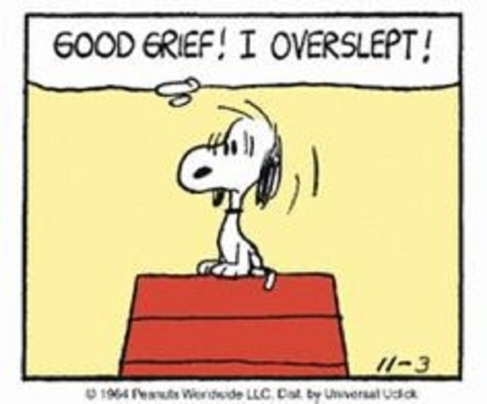 snoopy oversleep