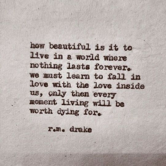 fall in love with the world