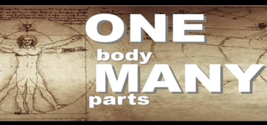 one-body-many-parts