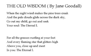 goodall old wisdom