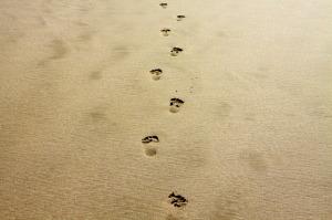 footprint-1021452_640