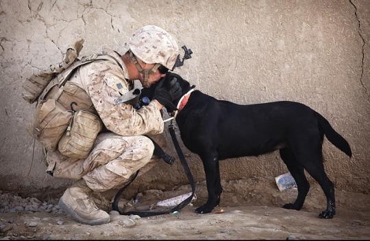 soldier service